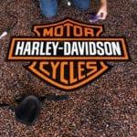 Harley Davidson Logo on Epoxy Garage Floor Coating